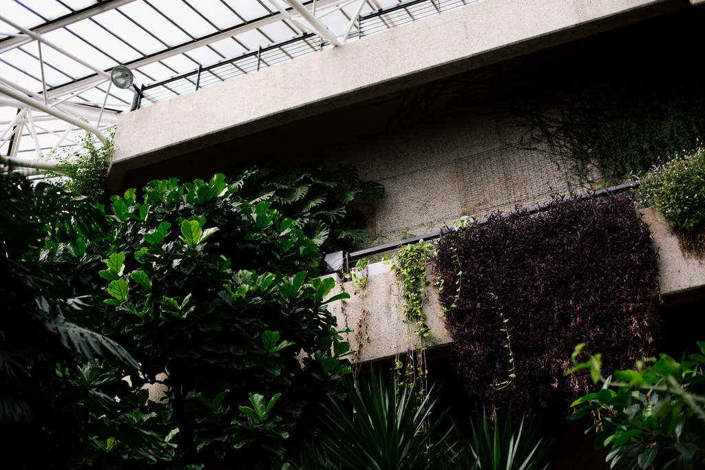 inside the barbican conservatory London venue