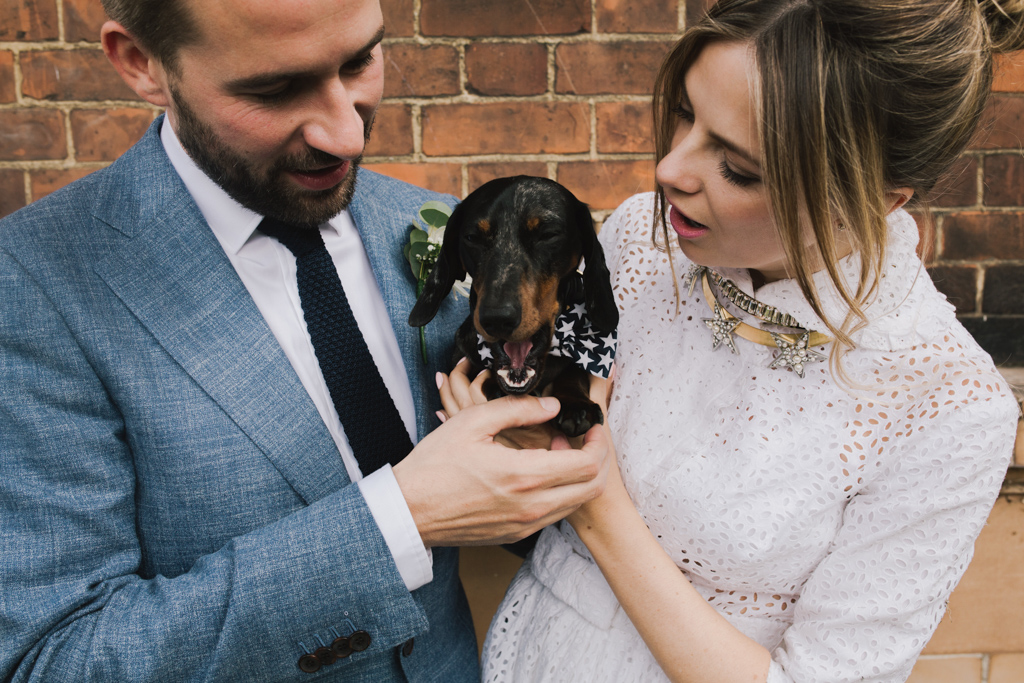 Bride & Groom with their dog at London Town Hall Wedding