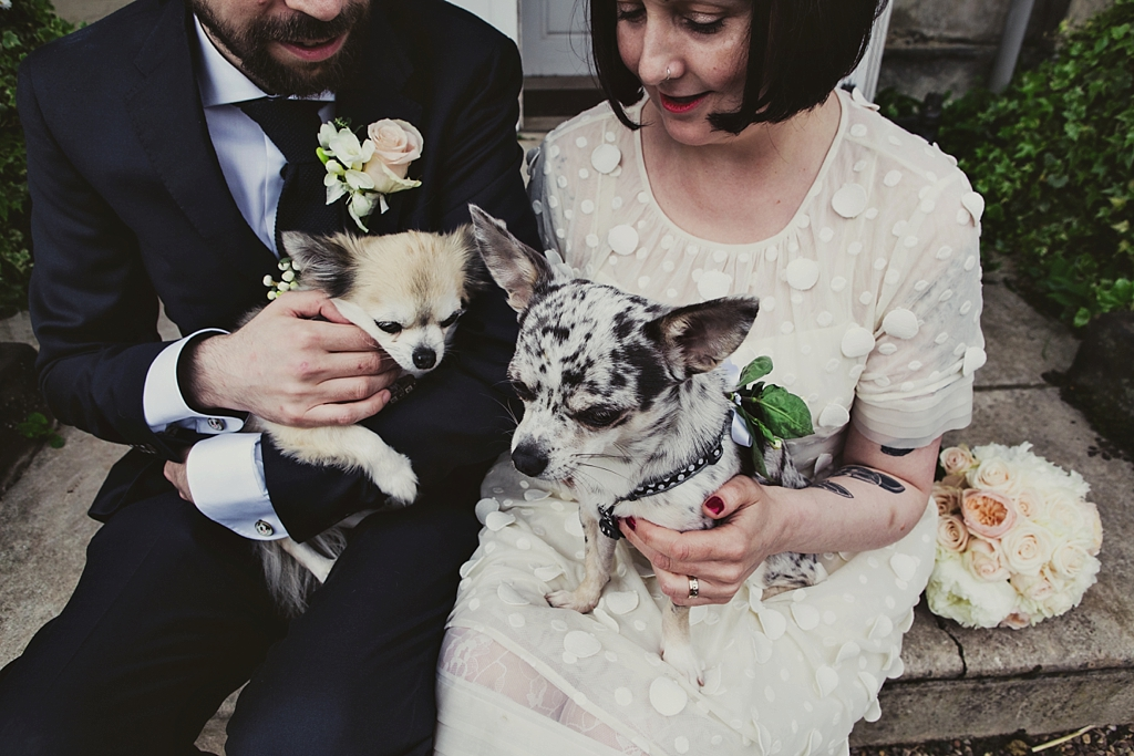 Quirky bride and groom with his and her cute dogs Derby wedding photography